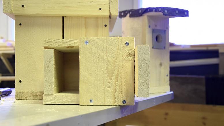 Tehin kirpputorilla valmistetaan myös harvinaisemman mallisia linnunpönttöjä. Kuvassa etualalla on tervapääskyn pönttö, jossa kulkuaukko sijaitsee alapuolella. Kuva: Päivi Hotokka
